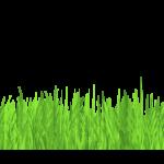 header_background_grass